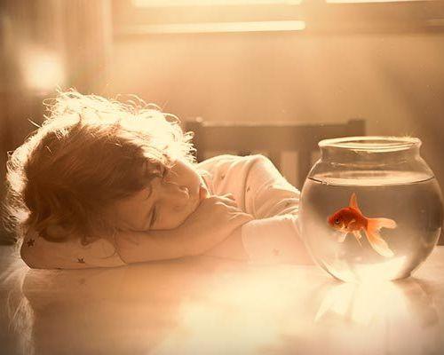 Пошаговая инструкция по запуску домашнего аквариума