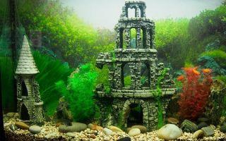 Изготовление грота для домашнего аквариума
