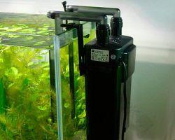 Разновидности фильтров для аквариума