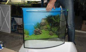 Как приклеить фон-пленку на заднюю стенку аквариума
