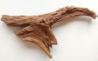 Мангровая коряга для оформления аквариума