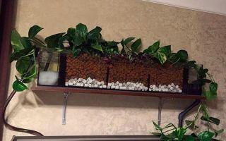 Изготовление фитофильтра для аквариума своими руками
