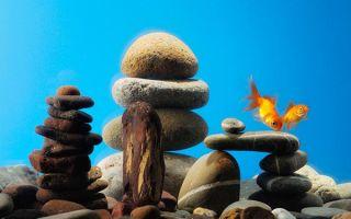 Самые популярные камни для аквариума