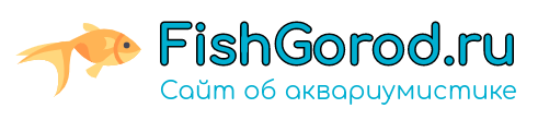 fishgorod.ru