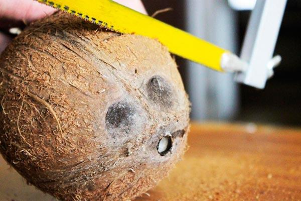 Подготовка кокоса