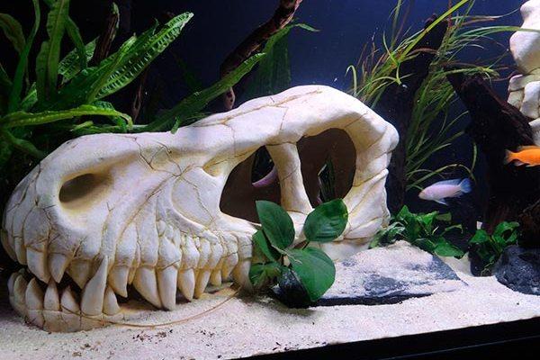 Тематический аквариум