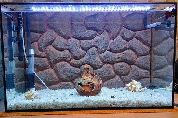 Задний фон аквариума