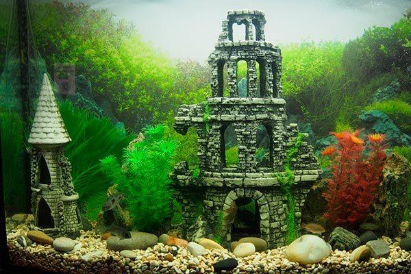 Какие бывают украшения для аквариума
