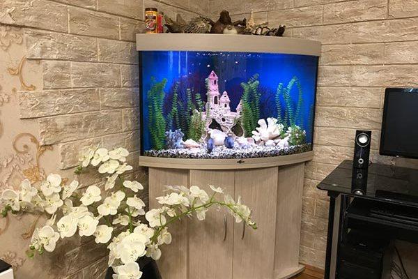 аквариум в углу