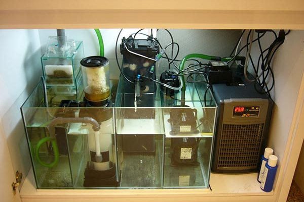 самп аквариум